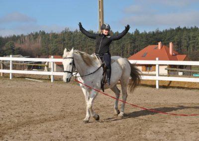 konie-12