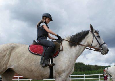 konie-13