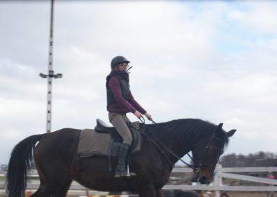konie-16