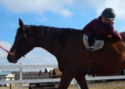 konie-18