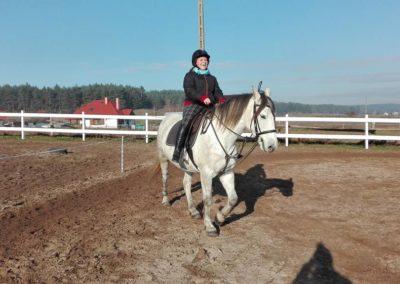 konie-24