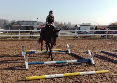 konie-25