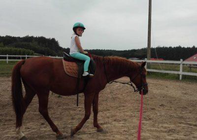 konie-32
