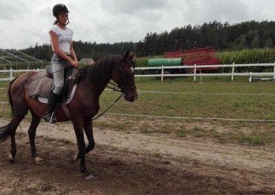 konie-33