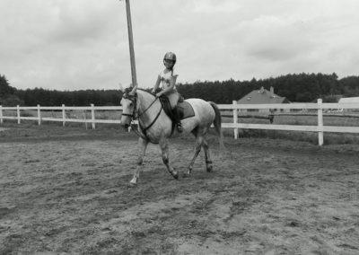 konie-34