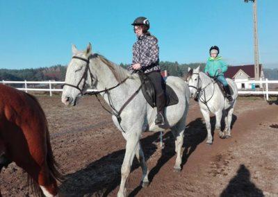 konie-38